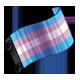 clothing_transgenderprideflag.png