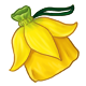 collectable_daffodiltrunk.png