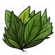 collectable_freshleaves.png