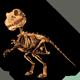 fauna_skeletalspino.png
