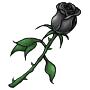 BlackRose.png