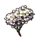 magic_alyssum.png
