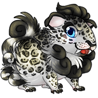 cavishi_snowleopard.png
