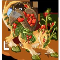 Tomato Throwing Festival