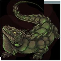 Gruner Leguan