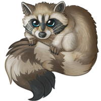 fetail_raccoon.png
