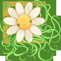 ozoa_daisy.png