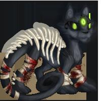 Skeletal Cat
