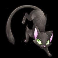 soluss_blackcat.png