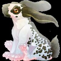English Spot Bunny