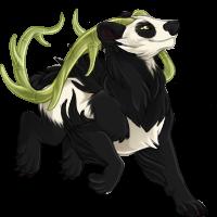 Prancing Panda