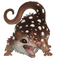 vircyon_quoll.png