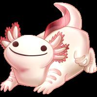 koaf_axolotl.png